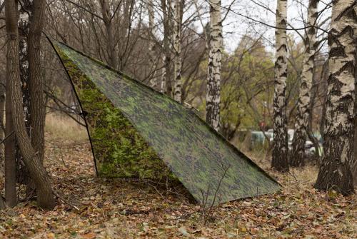 Särmä TST Laavukangas, M05 metsäkuvio